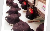 2014 Membership Caps